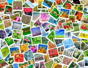 A lot of nature photos