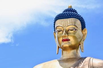 Bronze Statue of Buddha Dordenma Overlooking Thimphu City
