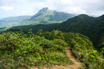 Dominica Mountain Landscape on Boiling Lake Hike