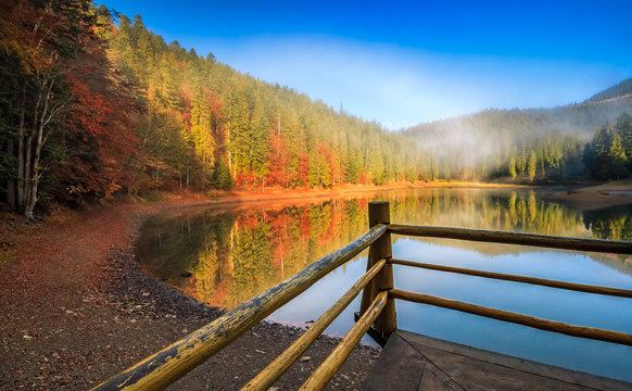 pier with wooden fence on the Lake in mountain. coniferous forest and some trees with red foliage at foggy sunrise in autumn