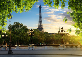 Fotomurales - View from Pont Alexandre III