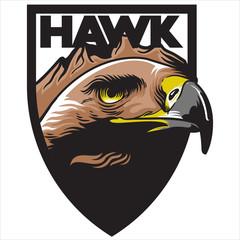 Hawk Eagle mascot emblem logo