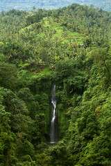 Waterfall in wild nature. Tropical forest.