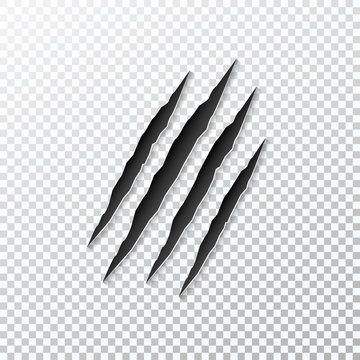 Claws scratching animal isolated on background. Vector illustration.