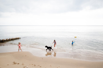 Children playing with dog in water at seashore