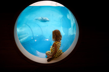 Girl looking through aquarium window at seal