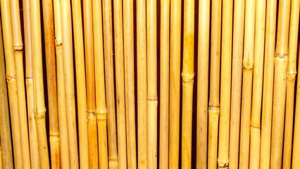 Bamboo background and texture