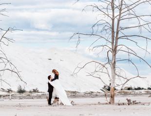The bride with red hair stands on the dried-up stump and hugs the groom on the background of the desert with withered trees, mountains of sand. Modern wedding dress and suit.