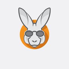 Stylish kangaroo with glasses