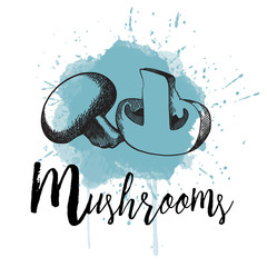 Vector illustration of mushrooms in hand drawn graphics depicted on a blue background