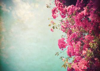 Wall Mural - Vintage paper postcard - beautiful tree flower in summer. vintage color tone style.