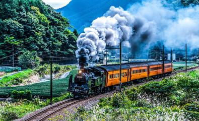 日本・静岡県・大井川鐵道・蒸気機関車・トーマス