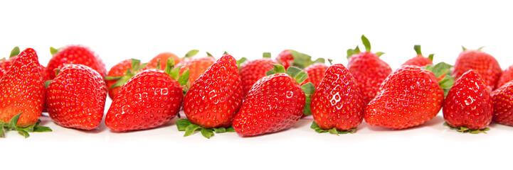 Viele rote Erdbeeren auf Weiß mit Spiegelungen, Panorama