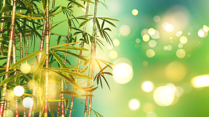 3D bamboo on a bokeh lights background