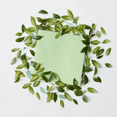 Paper with leaves