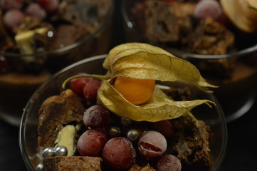 Luxurious Chocolate Dessert