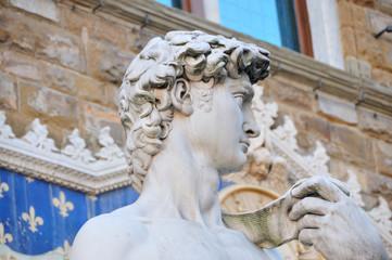 David (detail) Florence, Italy