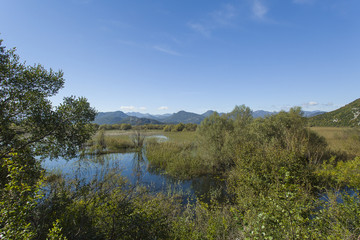 Montenegro. Skadar Lake. It is one of the most beautiful lakes in Europe.