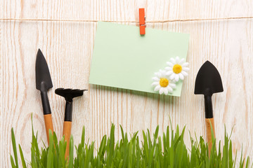 Gardening tools and grass.