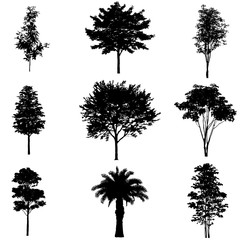 Vector set of tree silhouettes.