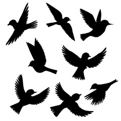 vector set of flying birds silhouettes