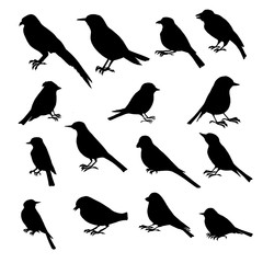 vector set of birds silhouettes