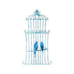 Two swallows in a cage