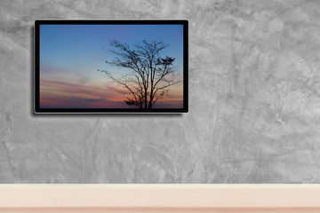 LED television, with silhouette of tree in hdtv on concrete wall in the room