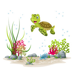 Illustration of an underwater landscape with turtle and plants