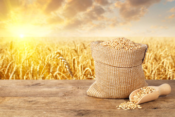 wheat grains on field background