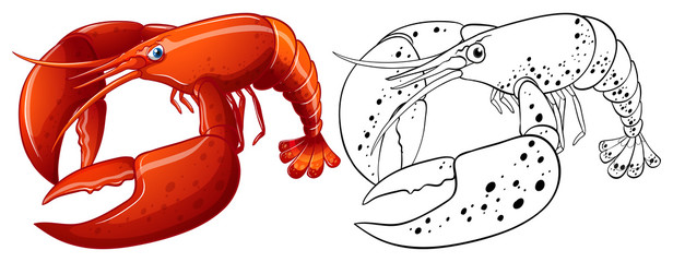 Animal outline for lobster