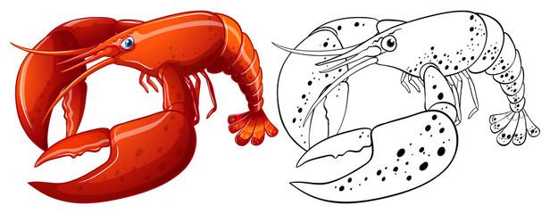 Animal outline for lobster