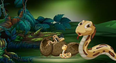 Scene with snakes hatching egg