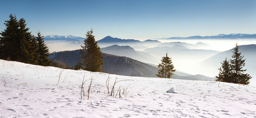 Slovak Landscape in Winter