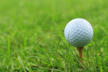 Golf ball on a tee peg