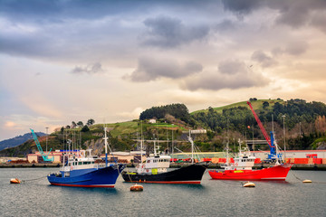 docked fishing boats at bermeo basque town, Spain