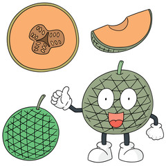 vector set of melon