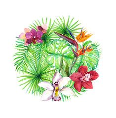 Tropical leaves, exotic flowers. Circle background. Watercolor