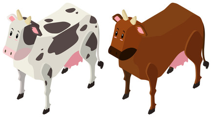 3D design for two cows