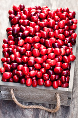 fresh  cranberry in a wooden box on rustic table