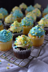 Blue and Yellow cupcakes with spring sprinkles