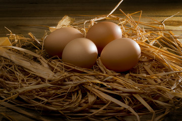 4 brown eggs in a straw nest