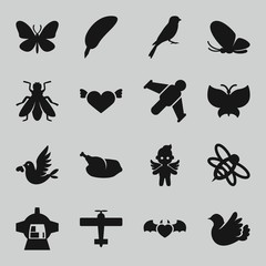 Set of 16 wing filled icons
