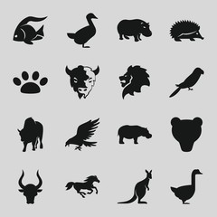 Set of 16 wild filled icons