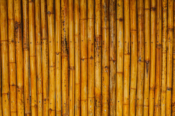 Beautiful background from bamboo.