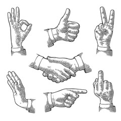 Male Hand sign. Like, Handshake, Ok, Stop, Middle finger, Victory