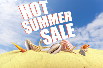 Summer sale special concept