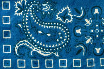 Blue Bandana Closeup Design