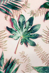 Wall Mural - Creative Flat lay with various tropical palm leaves on pastel pink background, top view