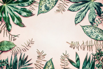 Wall Mural - Creative nature frame made of tropical  palm and fern leaves on pastel background, top view